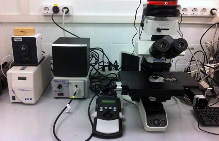 U12-E02. CytoViva Hyperspectral Imaging System (HSI)