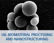 U6-Biomaterial Processing and Nanostructuring Unit