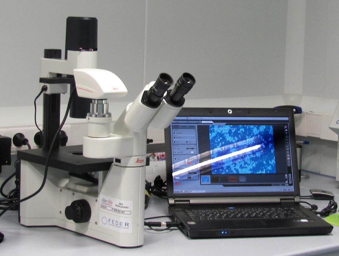 Inverted microscope E03