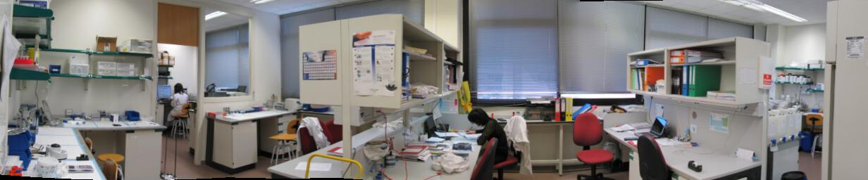 Laboratory immunoassays E08