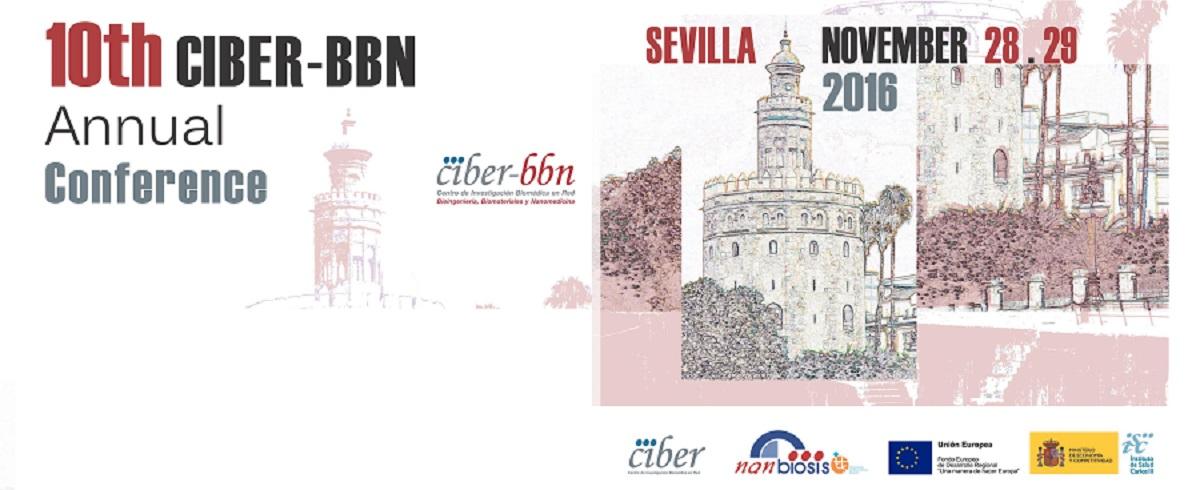 Conference_10th_CIBER-BBN_2016_Nanbiosis.