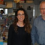 Nanbiosis U26 - ribes y martinez-manez development of nanodevices to detect the presence of cocaine