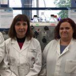 U1 NANBIOSIS - Public-Private collaboration to Investigate New Inhibitors Against Pain