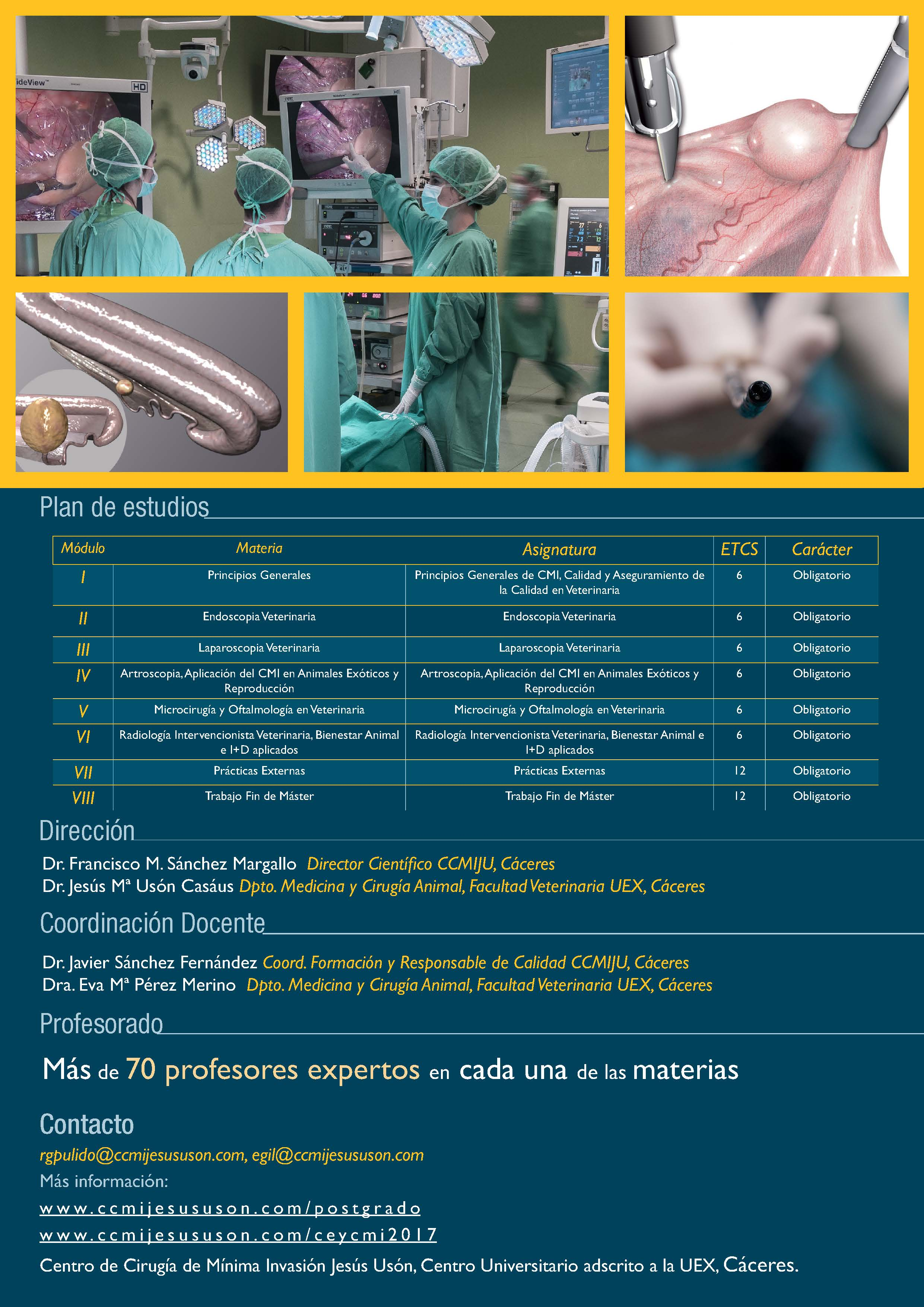 II MASTER ON ENDOSCOPY AND MINIMALLY INVASIVE SURGERY IN