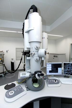 U28-E07. FEI Tecnai G2 20 TWIN Transmission Electron Microscope + Cryo-TEM