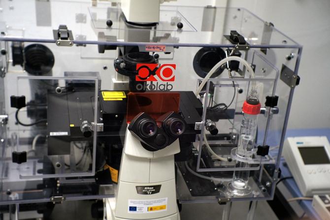 U28-E15. Nikon Eclipse Ti TIRF Fluorescence Microscope + N-Storm